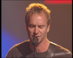 "Sting ""Fields Of Gold"" (1994)"