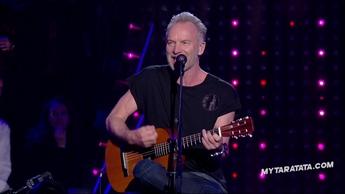 """Sting """"Desert Rose"""" (2019)"""