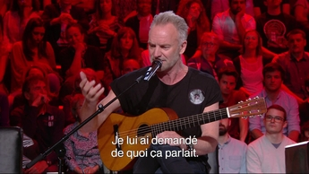 Interview Sting (2019)